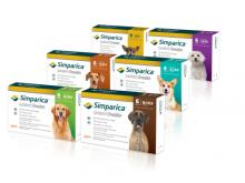 Chew on this: New flea & tick medications give pets something to sink teeth into