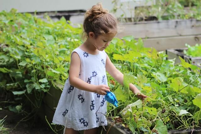 Cultivating Your Child's Green Thumb During COVID-19
