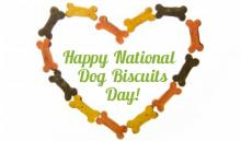 Here's something to bark about: A National Dog Biscuit Day discount from Packaged Facts