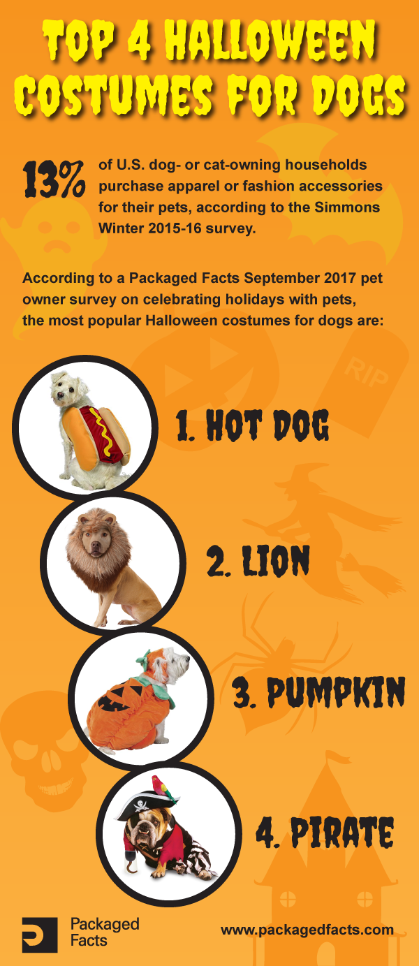 Top 4 Halloween Costumes for Dogs